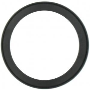 Valve Seal, 2″, Bulk